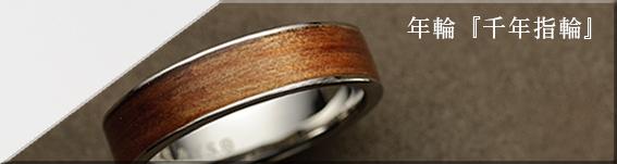年輪 千年指環「千年の時」